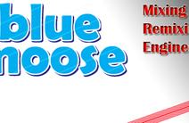 Photo of Blue Moose Mixing & Remixing