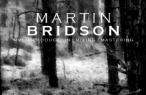 Photo of Martin Bridson