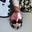 Listing_thumb_photo-5
