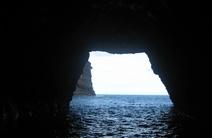 Photo of Sea Songs