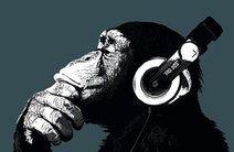 Photo of Bad Monkey Music Productions