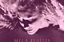 Photo of Mega Bruiser
