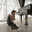 Listing_thumb_sitting_by_piano_final_donnie