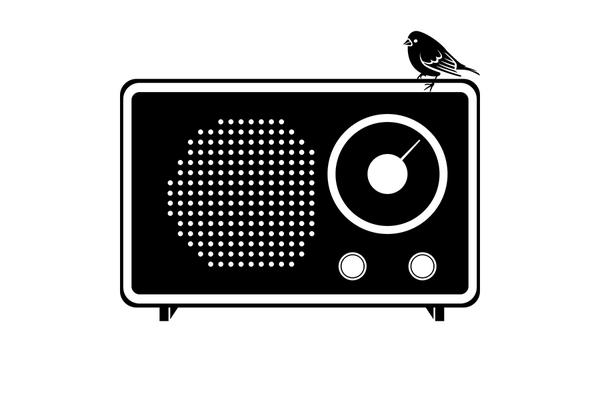 Little Bird Big Sound on SoundBetter