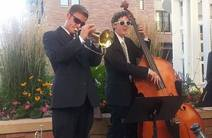 Photo of Brendan ODonoghue Bass & Cello