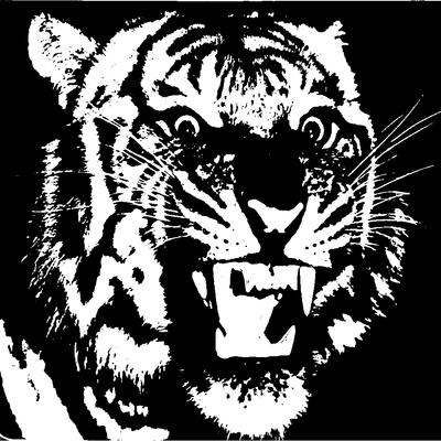 El Tigr3 on SoundBetter