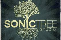 Photo of Sonic Tree Studios
