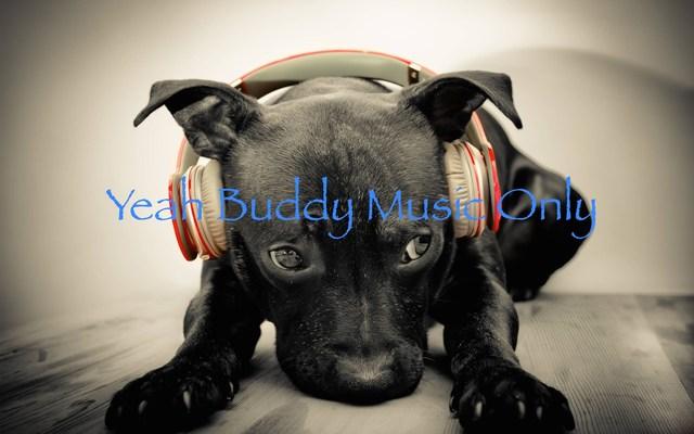 Listing_background_yeah-buddymo-puppy